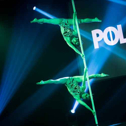 pole art italy 2016 double elite 40