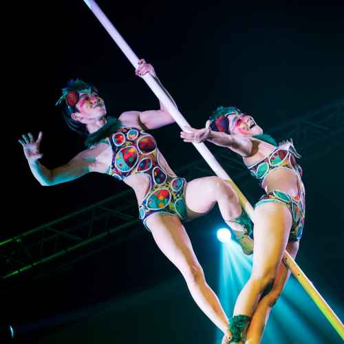 pole art italy 2016 double elite 38