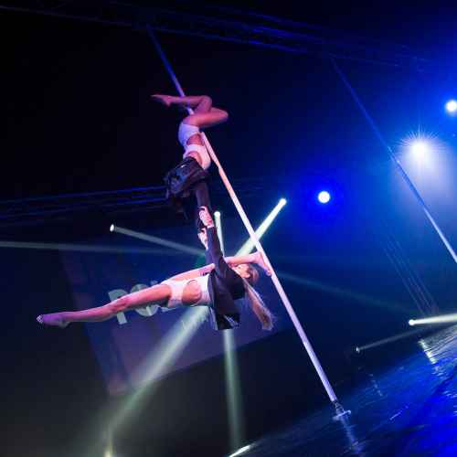 pole art italy 2016 double elite 15