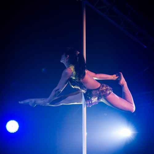 pole art italy 2016 master 7