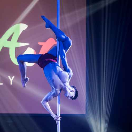 pole art italy 2016 men elite 2