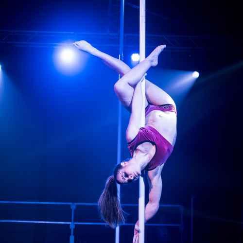 pole art italy 2016 women elite 118
