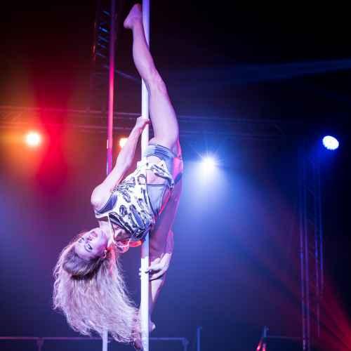 pole art italy 2016 women elite 109