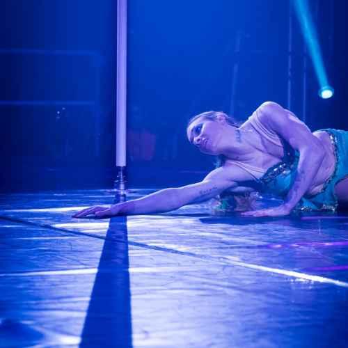 pole art italy 2016 women elite 55