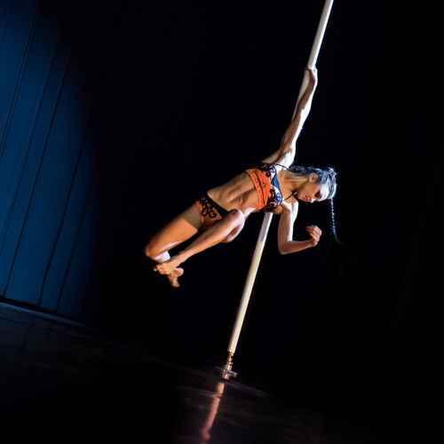 Pole art italy 2015 donne 57