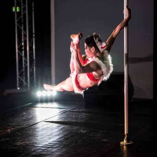 Pole art italy 2015 donne 13